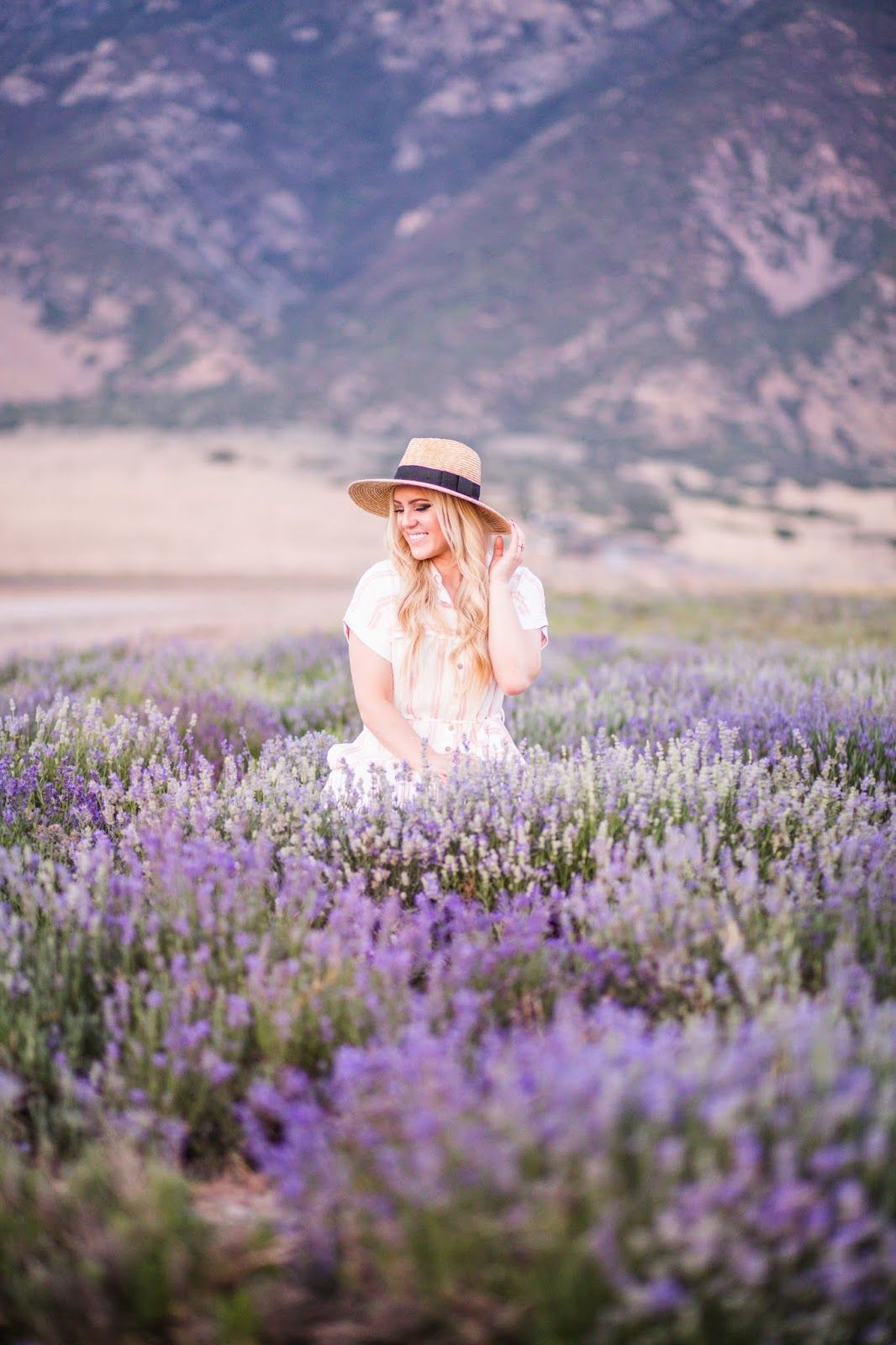 The Lavender Fields Mona Ut Lavender Fields Photography Lavender Fields Fields Photography