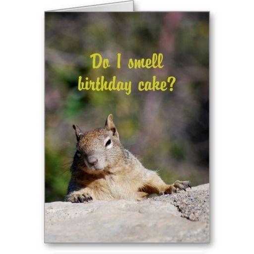 Begging Squirrel Happy Birthday Card Zazzle Com In 2021 Funny Happy Birthday Images Happy Birthday Greeting Card Happy Birthday Cards