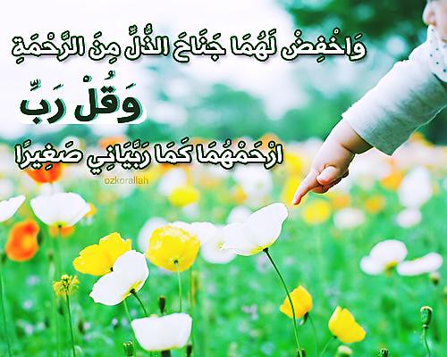 بر الوالدين منتدى رحمة مهداة التعليمي Islam Teaching