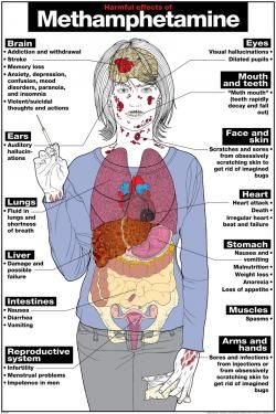 the harmful effects of alcohol on the body Alcohol – the body & health effects  for preparing the summaries of the health and body effects of alcohol in this  some people but is harmful for everyone at.