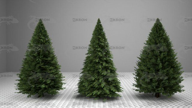 3d Christmas Tree Collection Model C4d Obj 3ds Fbx Ma Lwo 63774 Christmas Tree Collection 3d Christmas Tree Christmas Tree