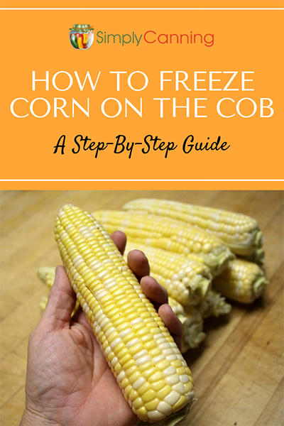 How To Freeze Corn Step By Step Guide For Freezing On Or Off The Cob Canning Corn Freezing Corn Frozen Corn