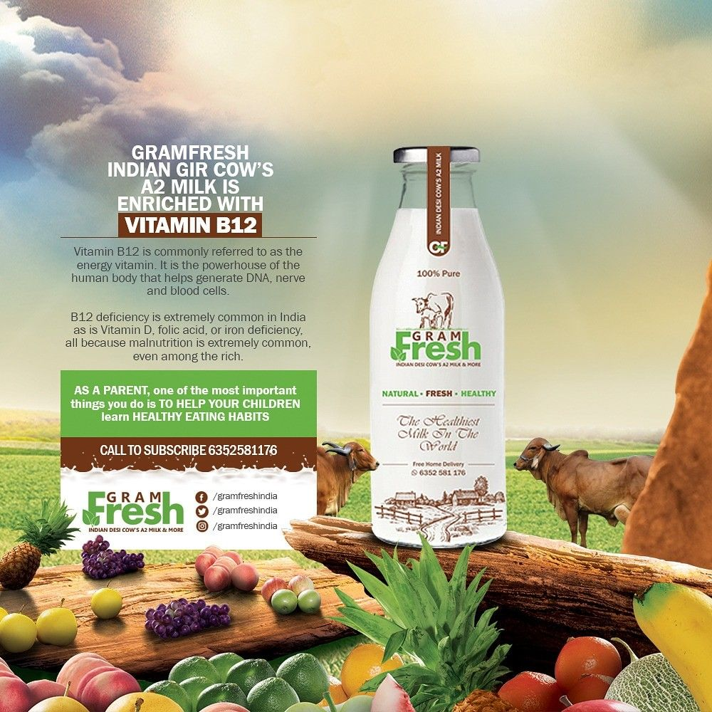 GramFresh Indian gircow A2Milk is enriched with