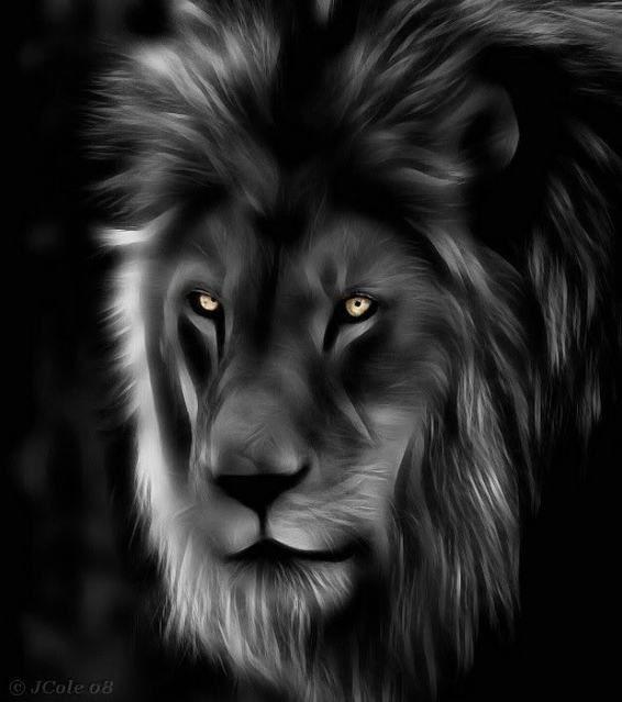 Pintura de Leão em preto e branco #coracoes leao pintura leao preto branco