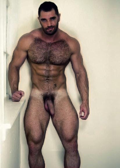 Velludo Gay 35