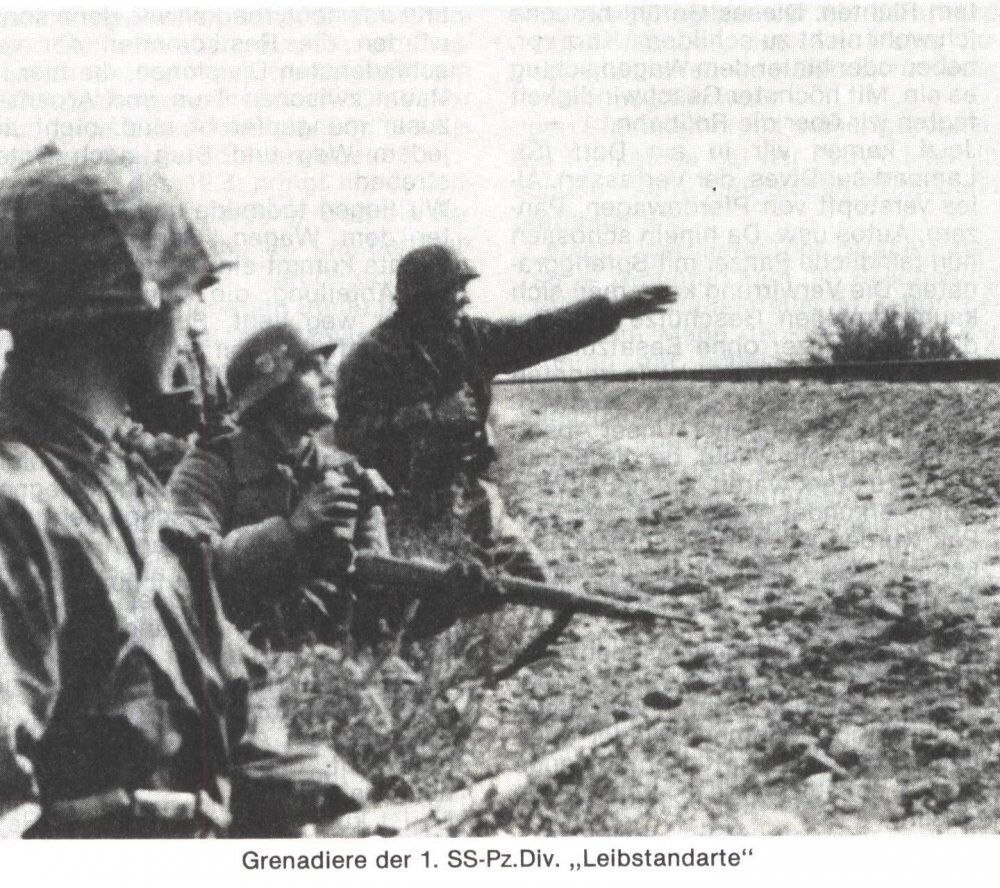 Grenadiers of the Leibstandarte, 1941 (possibly in the Battle for Mariupol).