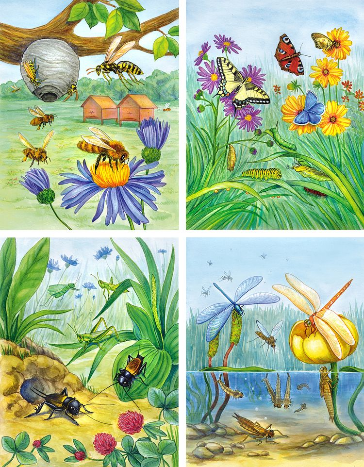 картинка сада с насекомыми часто нем говорят