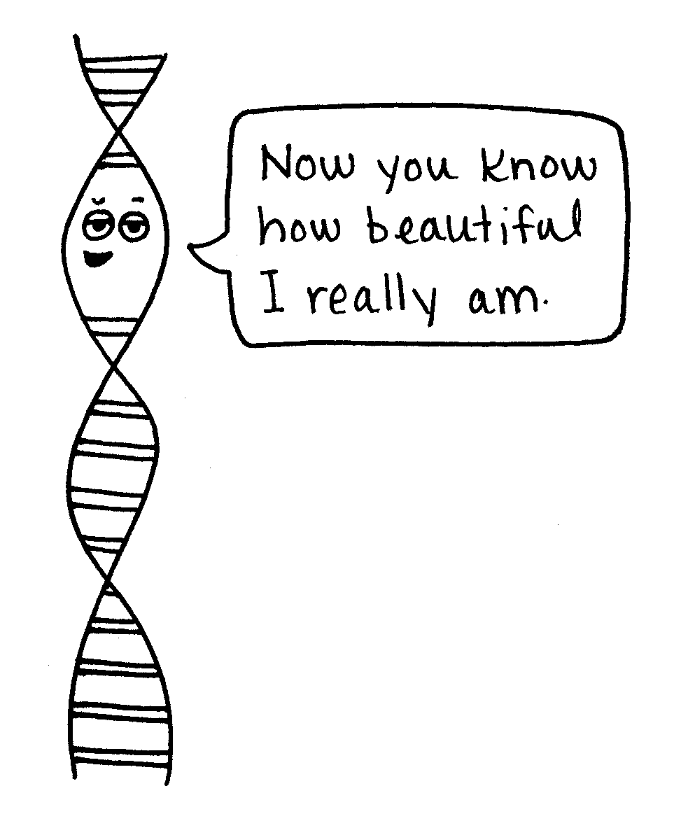 Katie McKissick's What's in your Genes? is a clever and