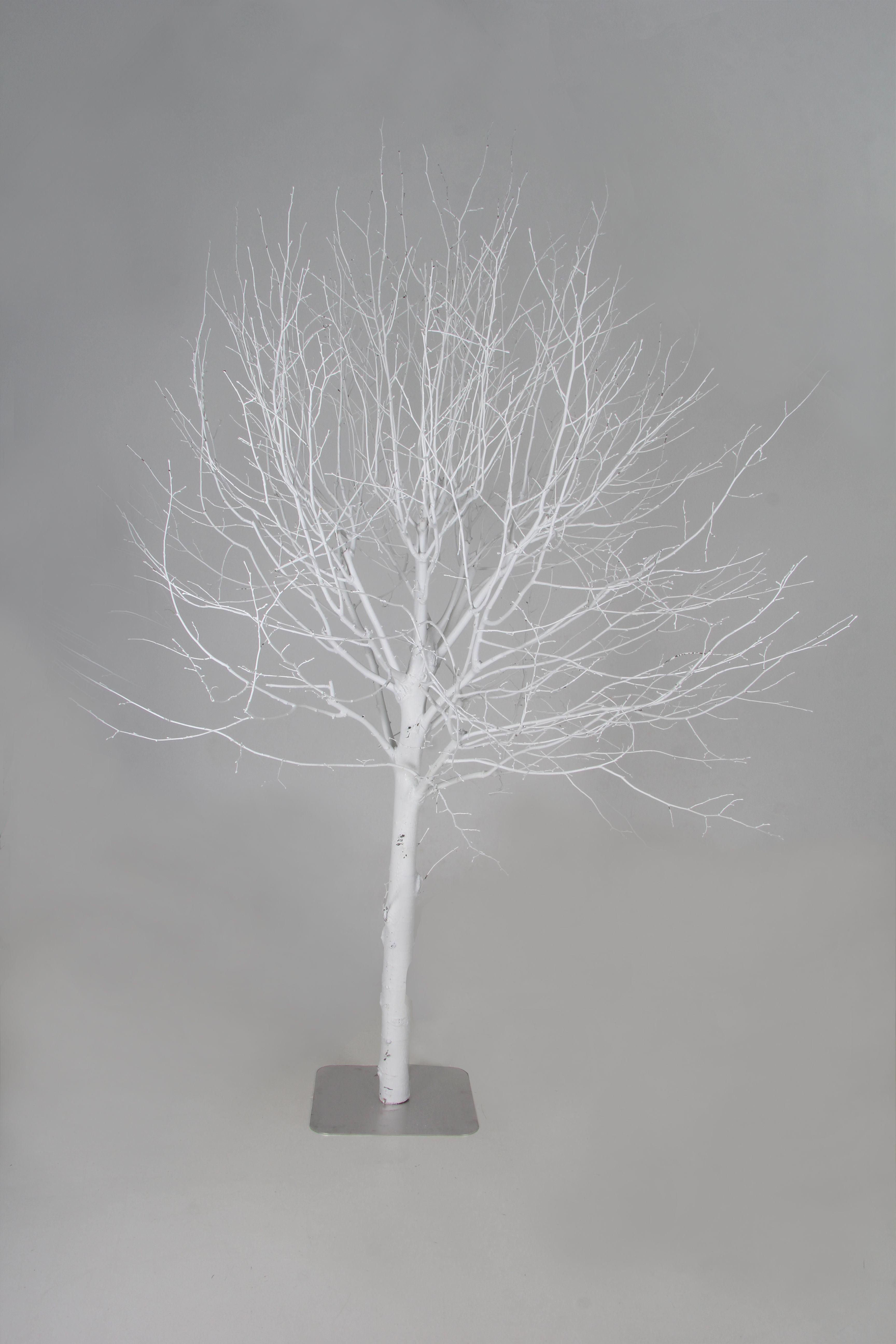 Decoratie Bomen Verschillende Soorten Te Koop Of Te Huur Www Decoratietakken Nl Decoratie Houten Lamp Boom