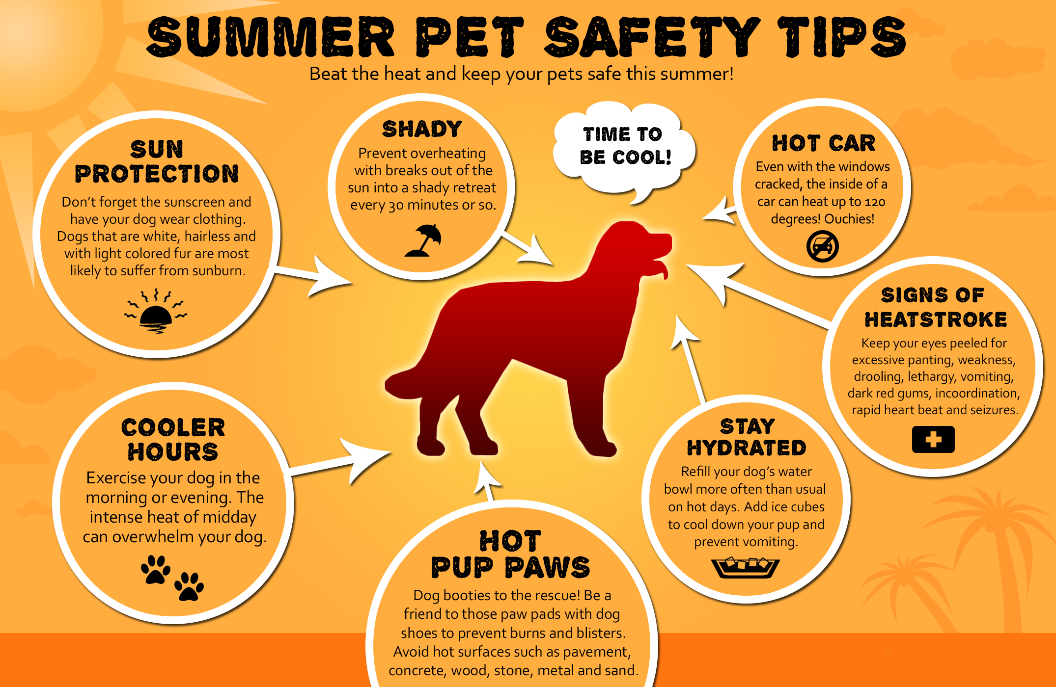 Protect Your Pets During Summer Months Don T Walk Dogs In Hot