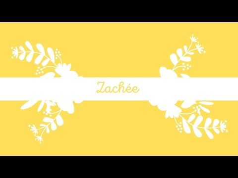 Zachée - YouTube
