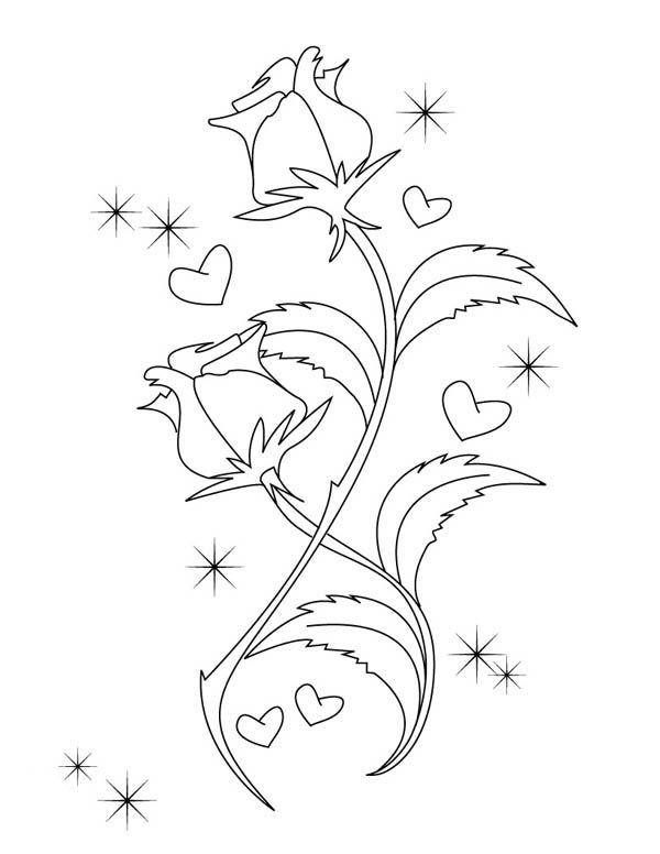 hearts roses beautiful drawing of hearts and roses coloring page - Coloring Pages Hearts Roses