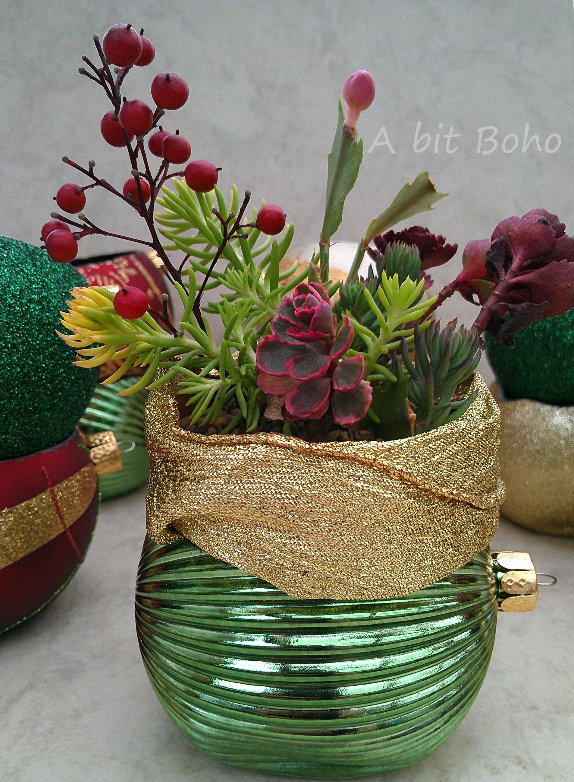 Homemade Christmas Ornament Mini Succulent Garden - A bit Boho