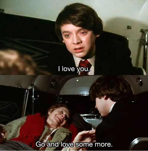 Harold And Maude Quotes | Harold And Maude Google Suche Harold And Maude In 2019