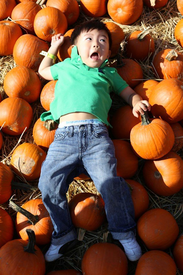 I Found This Little Guy In The Pumpkin Patch At The Queens County Farm Museum All Those Pumpkins Gave Me A Great Idea F Humans Of New York Queens County Human