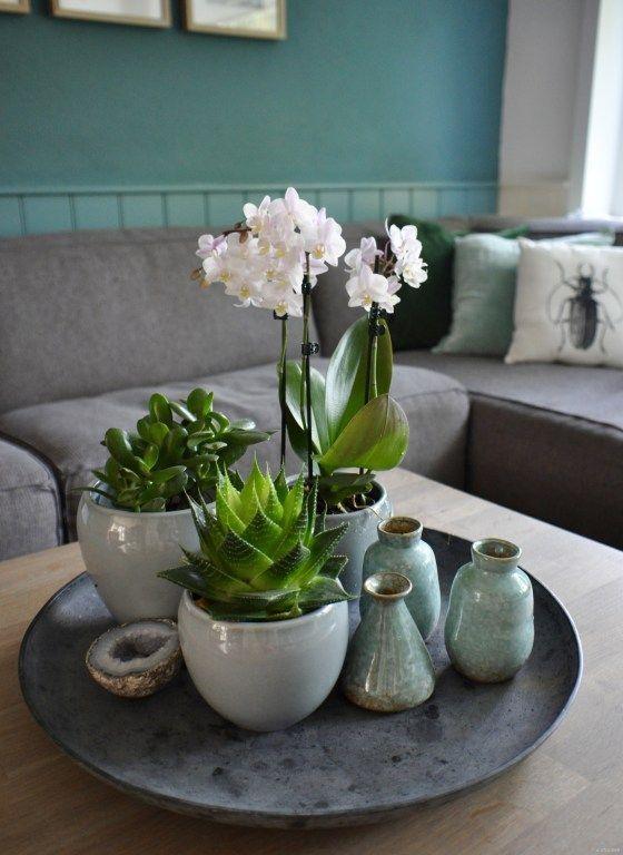 Photo of Table decoration green & wonderfully fresh