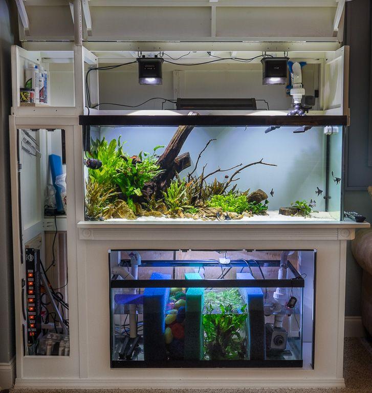 75 gal w diy custom stand and diy sump refugium low for 4 gallon fish tank