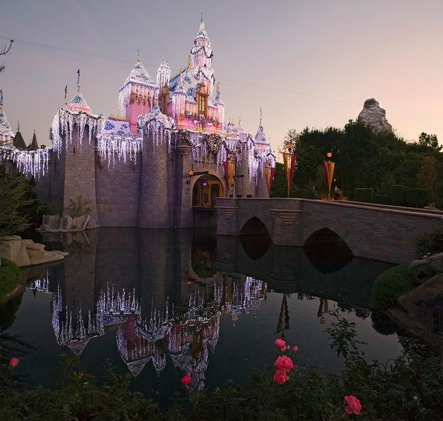 """""""We believed in our idea: a family park where parents and children could have fun, together."""" - Walt Disney"""