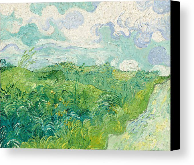 Green Wheat Fields Auvers Canvas Print Canvas Art By Vincent Van