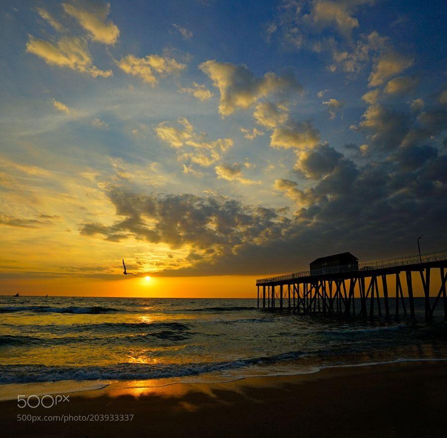 http://ift.tt/2jr6Zkd #Nature_breathtaking #Photos Dawn Flight - Sunrise at the New Jersey Shore by kevinreynolds_sunrise