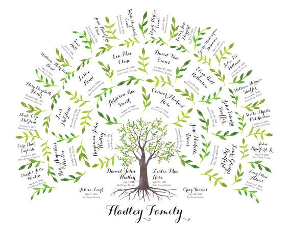 family tree chart 4 generations