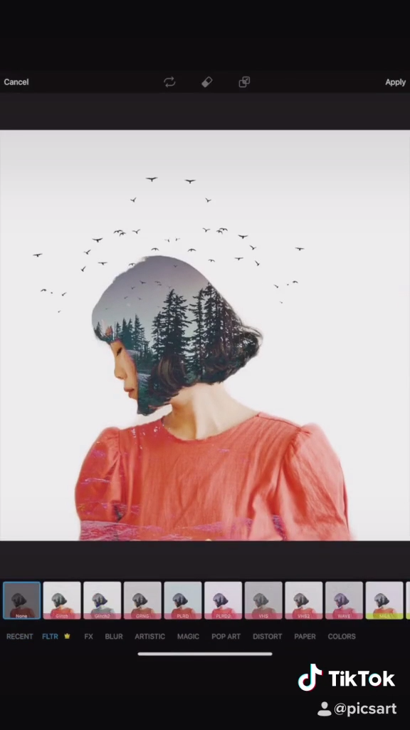 3 Different Ways To Create Double Exposure Edits | PicsArt Tutorial
