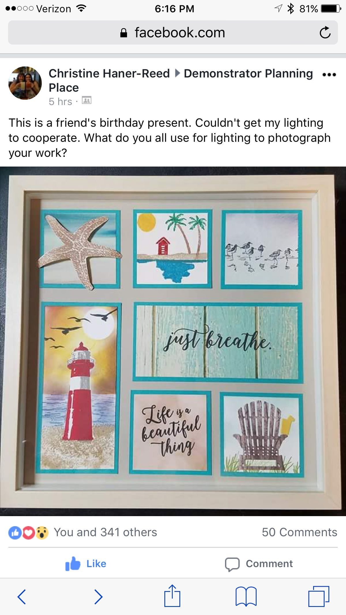 Pin By Linda Dejongh On Colorful Seasons Box Frame Art Card Craft Stamp Projects