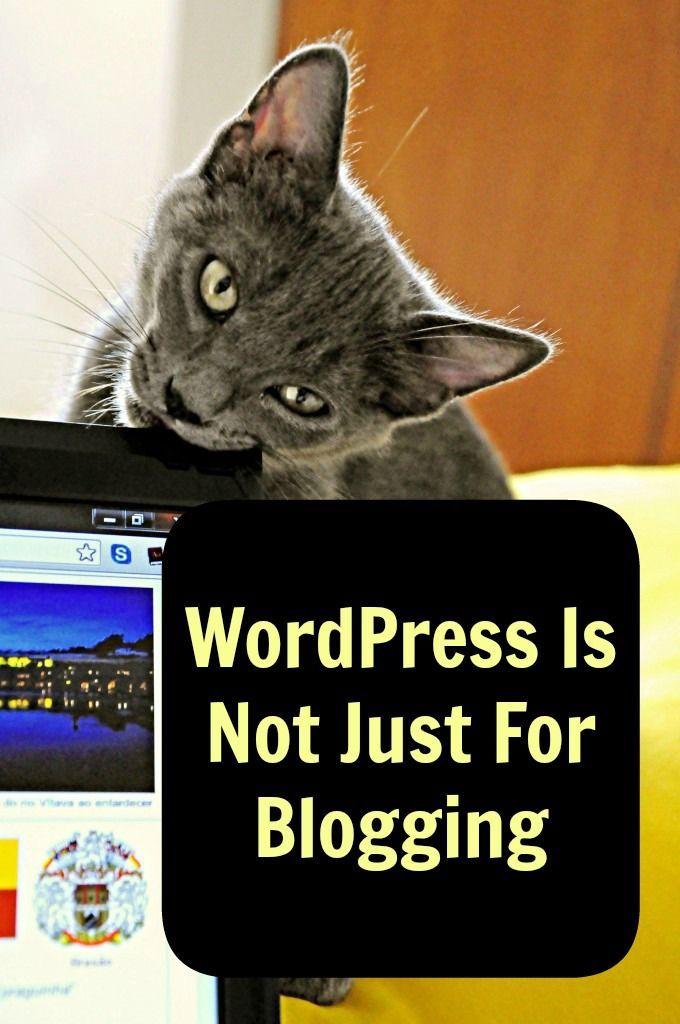 WordPress Is Not Just For Blogging   WordPress, Blog