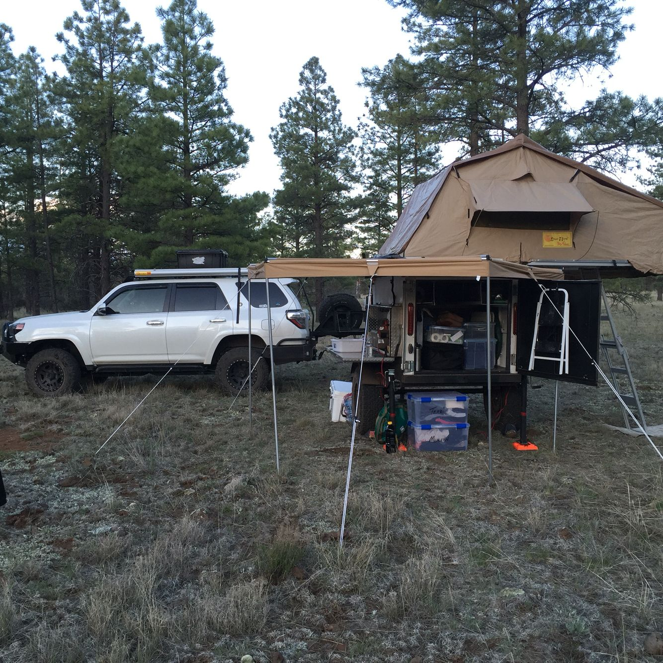 Wild camping, Coconino National Forest AZ