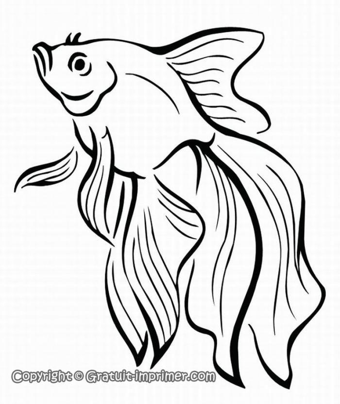 Poisson coloriage gratuit imprimer poisson rouge de - Coloriage poisson rouge ...