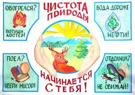 плакат по охране природы: 9 тыс изображений найдено в ...