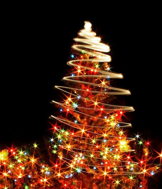 14 best led christmas tree lights images on pinterest christmas 14 best led christmas tree lights images on pinterest christmas dcor xmas trees and christmas time aloadofball Gallery