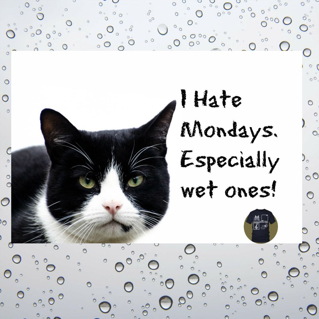 """Rainy Days And Mondays Quotes: As The Song Goes, """"rainy Days And Mondays Always Get Me"""