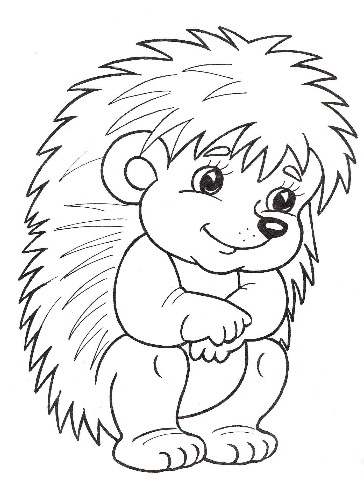 Раскраски для малышей — игрушки   Animal coloring pages ...