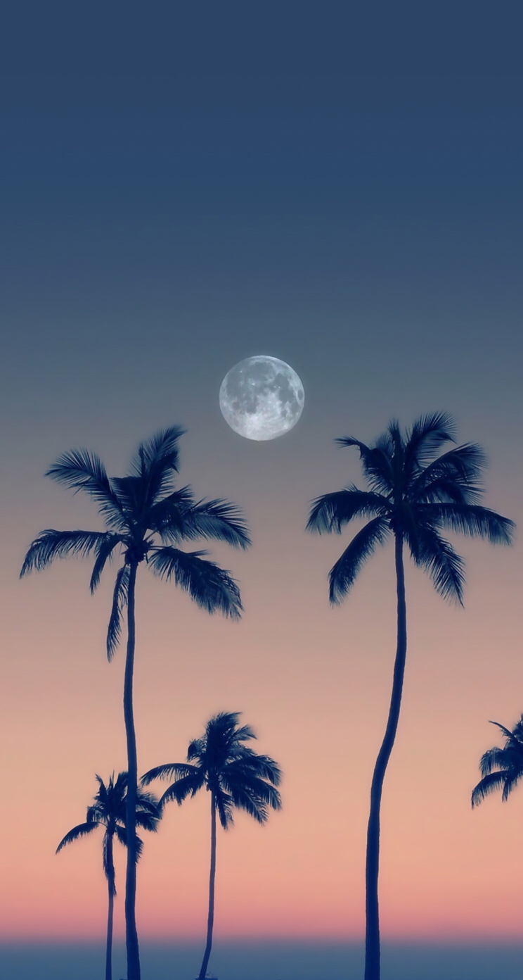 Moon Wallpaper Backgrounds Pretty Wallpapers Phone Wallpaper Cute Wallpapers