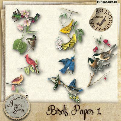 Cu Digital Product Birds Paper 1 By Gingers Scraps At Go Digital