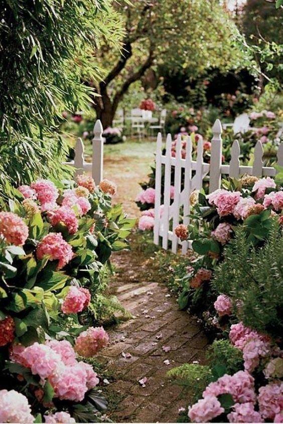 Photo of gorgeous garden ideas, white picket fence, pink hydrangeas #Cute #decoarchi #dec…