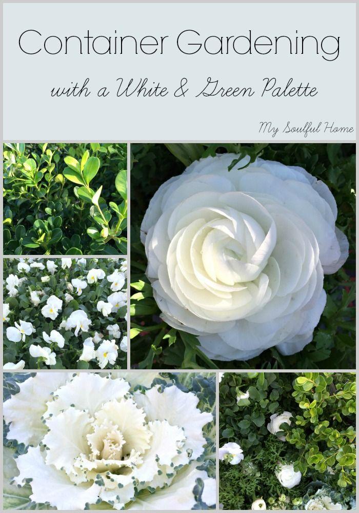 24 white garden pots ideas