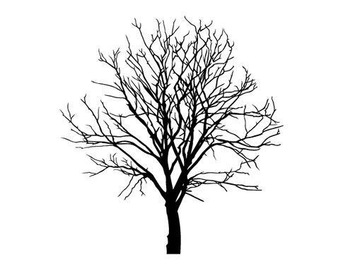 Schwarz/weiss Ansicht   Wandtattoo Baum