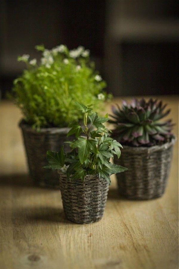 Concrete round basketweave plant pots.