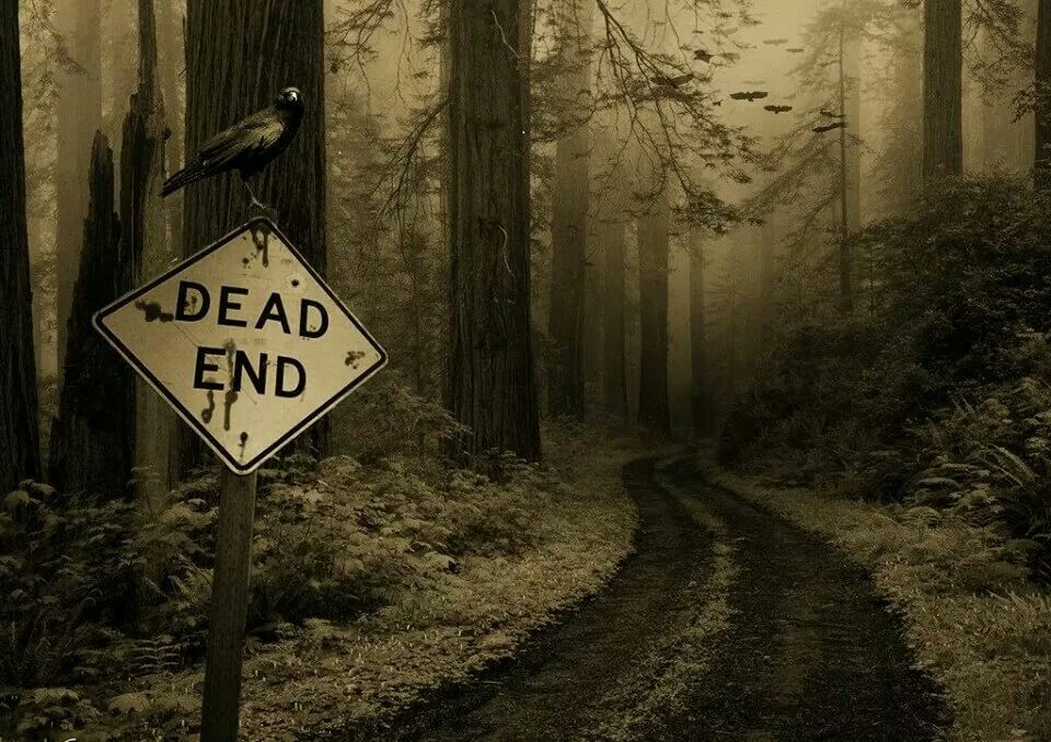 Dead End | Creepy woods, Spooky places, Scary places