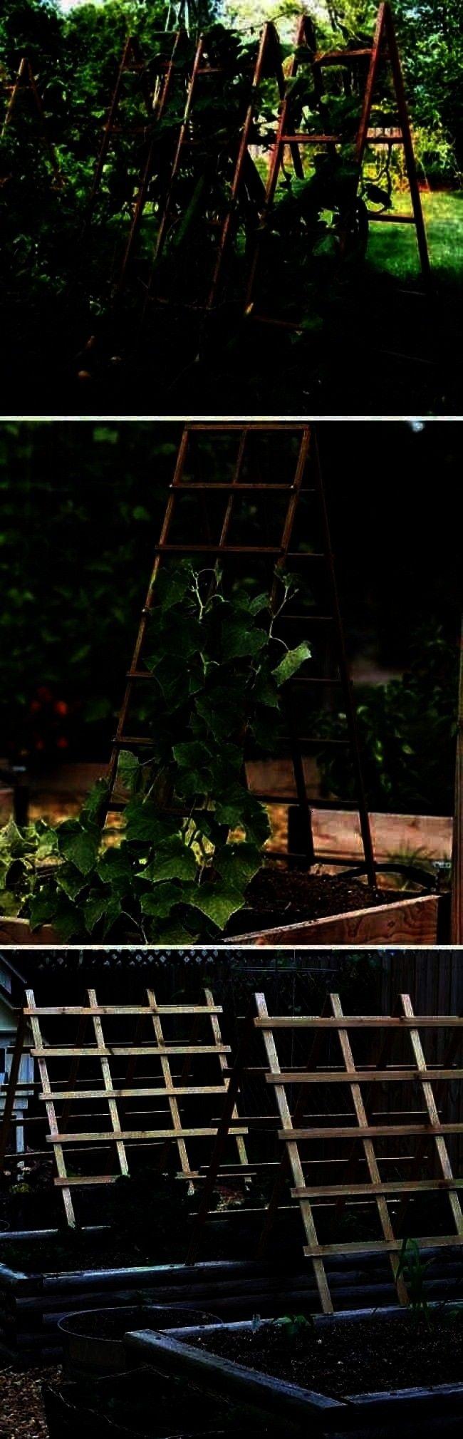 DIY-Gittern fr Gemse und Obst -garden care vegetable einfache Ideen zum Bauen von DIY-Gittern fr Ge