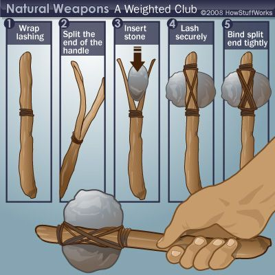 What natural weapons could I find in the wilderness?