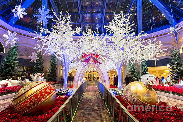 Bellagio Christmas Walkway Path by Aloha Art in 2020 | Walkways