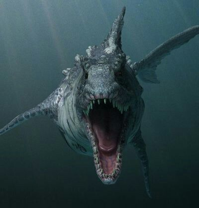 Dino shark 2010