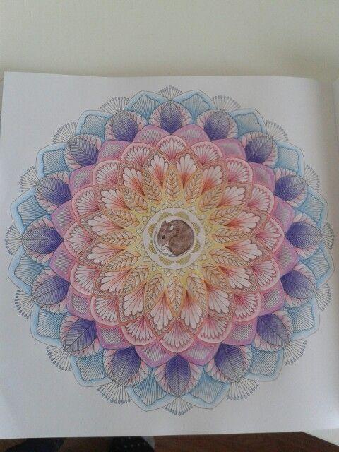 Doormouse In Flower