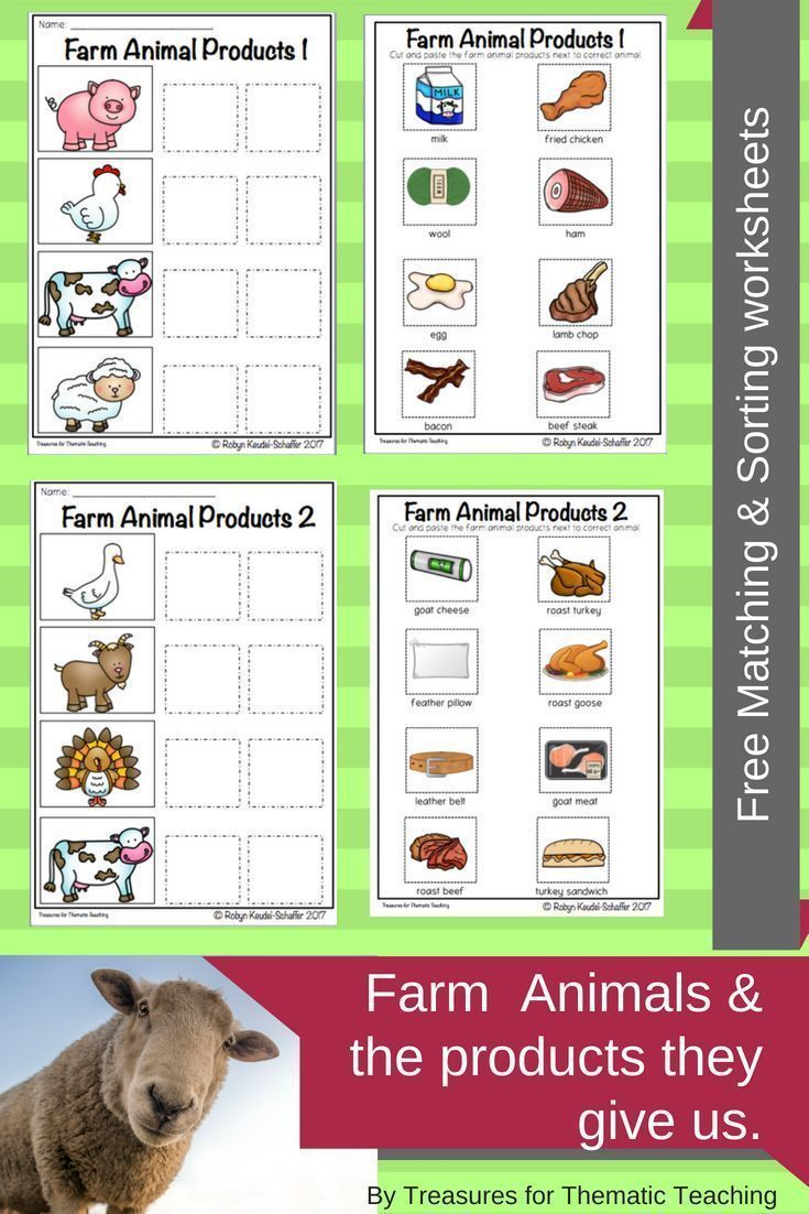 Free worksheets available to reinforce the products we get from farm animals.  Simply match the fa