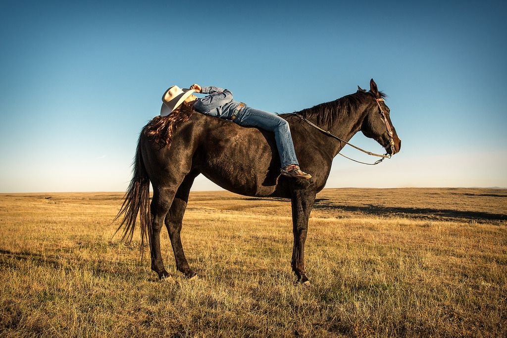 Katie covers her eyes with her cowboy hat while lying down on her horse near Fort Belknap, Montana. ▪ my blog ▪ my facebook ▪ my twitter ▪ my website ▪ my youtube ▪ my e-mail © 2015 Todd Klassy. All Rights Reserved. https://www.picturedashboard.com