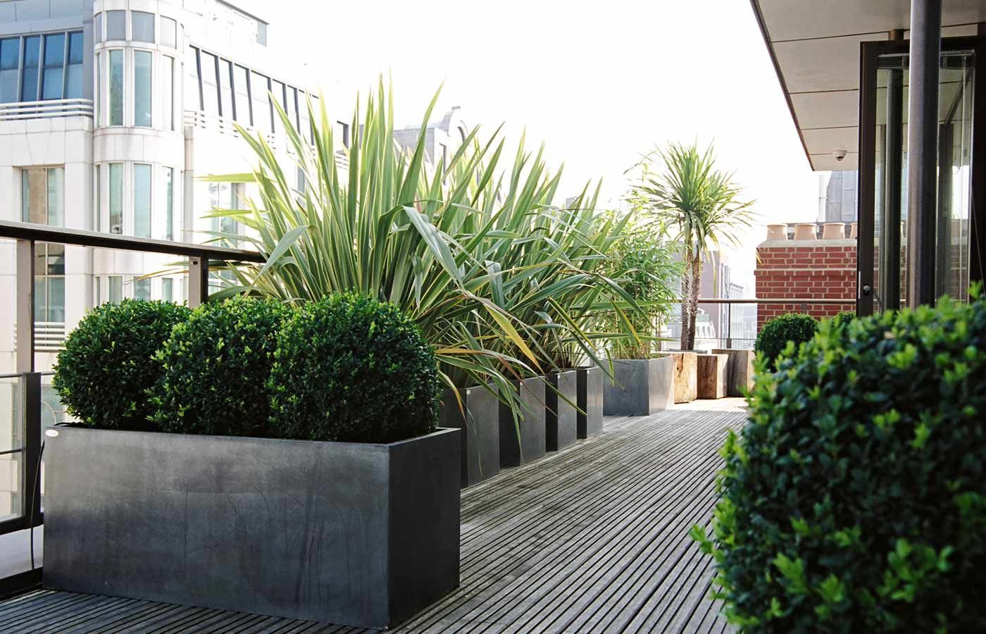 Roof Terrace Ideas For The Home Penthouse Garden