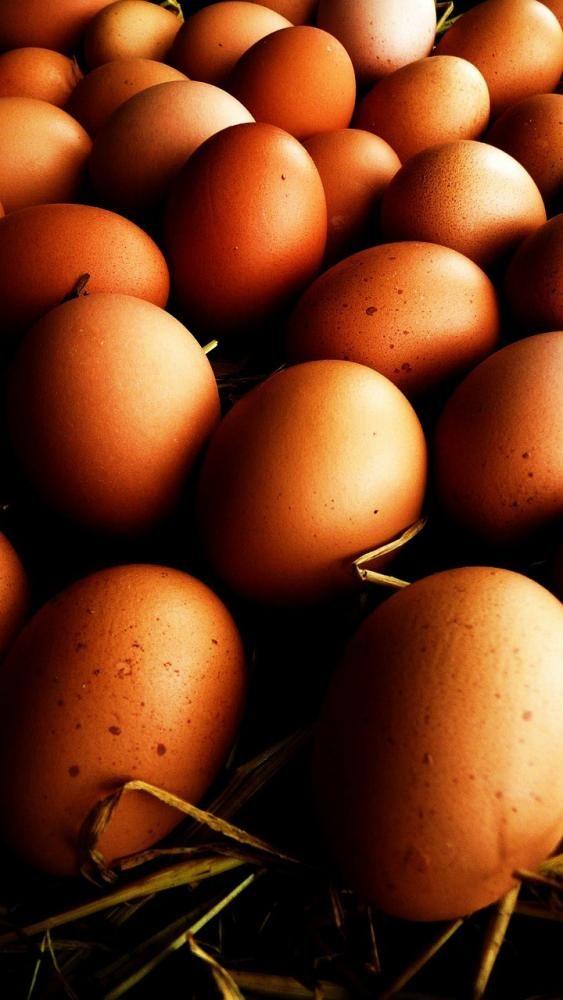 Técnicas de cocción de los huevos. Consejos para obtener los mejores resultados en la elaboración de recetas con huevo. Cocción de huevos con y...
